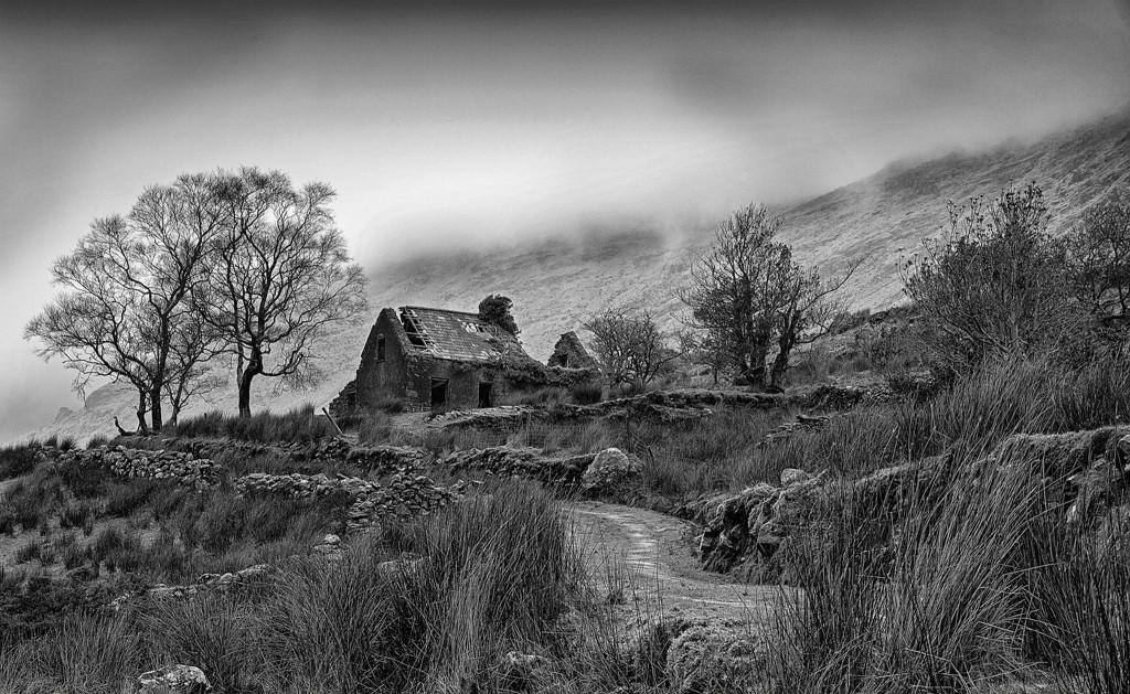 Ruined Farm House   Killarney 12 A_2